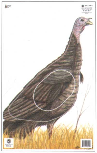 Turkey - G3 (NFA-16)
